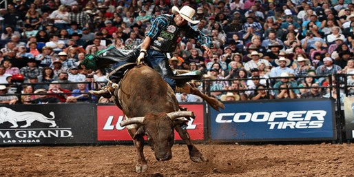 $25 -- Pro Bull Riders in Charlotte, Save $10