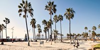 $117 -- Houston to Los Angeles Nonstop (Roundtrip)