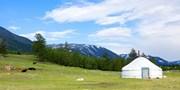 ¥144,000 -- モンゴルの大草原で乗馬&星空観賞&ゲルに宿泊 直行便利用全食付