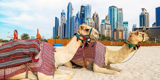 $710* & up -- Flights to Dubai on 'Best Airline', R/T