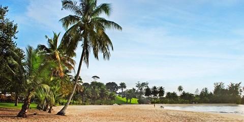 352€ -- Billets d'avion A/R vers la Côte d'Ivoire à saisir