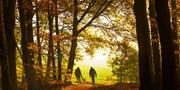 ab 99 € -- Kurzurlaub im Böhmerwald mit Halbpension