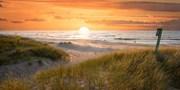 69 € -- Rügen entdecken bei Strand-Auszeit mit Menü, -54%