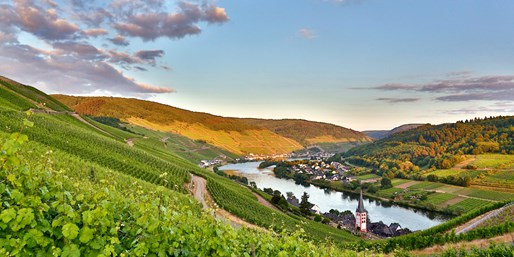 119 € -- Deluxe-Tage im Mosel-Schloss mit Menüs & Spa, -34%
