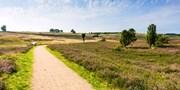 ab 119 € -- Aktiv entspannen in der Lüneburger Heide