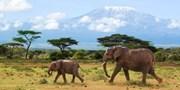 ab 1299 € -- Kenia mit allen Sinnen erleben