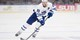 $15 -- Toronto Marlies Hockey incl. Weekends & Boxing Day