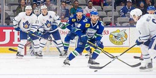 $15 -- Toronto Marlies Hockey incl. Weekends & Boxing Day