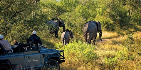 $4998 -- Luxury South Africa Vacation from 38 Cities