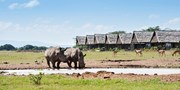 $3499 -- Kenya: Luxe 7-Night Safari + Air, $2000 Off