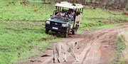 $2999 -- South Africa 4-Star Safari w/Air from 38 Cities