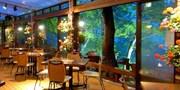 ¥7,580 -- 避暑 蓼科リゾート 鮑・オマール海老含むテラスディナーほか2食付
