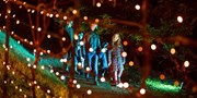 £10 -- 'Christmas at Blenheim': Illuminated Festive Trail