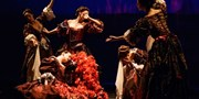 $45 -- Opera Atelier's 'Dido and Aeneas' in Toronto
