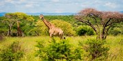 £1379pp -- South Africa 13-Nt Guided Tour exc Flts, Save 10%