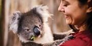 $2,599 起 -- 獨家減四百 澳洲阿德萊德 2 晚套票 海獅、樹熊零距離接觸
