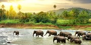 $2190 -- 8-Night Guided Sri Lanka and Dubai Tour Incl. Air