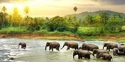 $2190 -- 8-Night Guided Sri Lanka and Dubai Tour Incl. Air
