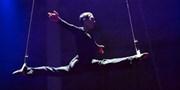 49 € -- Elektrisierend: Neue Show in Berliner Varieté, -30%