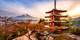 ¥4,780起 -- 千面日本 赏枫泡汤玩雪 东京/大阪/伊豆/北海道自由行&团队