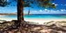 $1399 & up -- Norfolk Island: 7-Nt Cottage Escape w/Flights