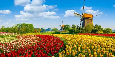 $23,300 -- 阿姆斯特丹看鬱金香!荷航精選歐洲城市機票,雙點進出更方便