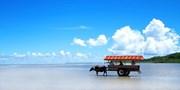 ¥48,800 -- ANA沖縄5島巡り4日間 ランチ&水牛車ほか1.3万相当観光付