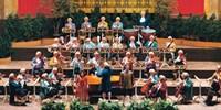 $23 -- 'Vienna Mozart Orchestra' Concert in Maryland
