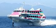 """¥9,000 -- 夏の""""島旅""""42%OFF 往復ジェット船 東京~伊豆大島ほか"""