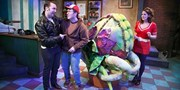$14.50 -- 'Little Shop of Horrors' in Chicago, Save 50%