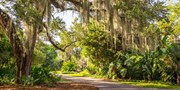 $69 -- Fairchild Tropical Botanic Garden Annual Membership
