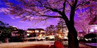 "¥12,960 -- 富士望む甲府迎賓館 最上階客室×個室食""Wアップ"" 88周年記念"