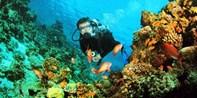 $2,300 -- PADI「進階」開放水域潛水員課程 國際認可 發掘更多潛水樂趣