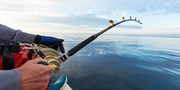 'Wonderful' 4-Hour Deep Sea Fishing Trip off Wildwood Crest