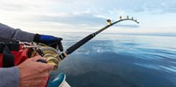 'Wonderful' 4-Hour Deep Sea Fishing Trip off Wildwood Crest