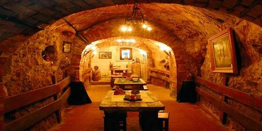 25€ -- Visita, Curso Cata y Degustación en Aranda de Duero