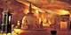 ¥119,500 -- ビジネスクラス×スリランカ6日間 3世界遺産含む観光&10食