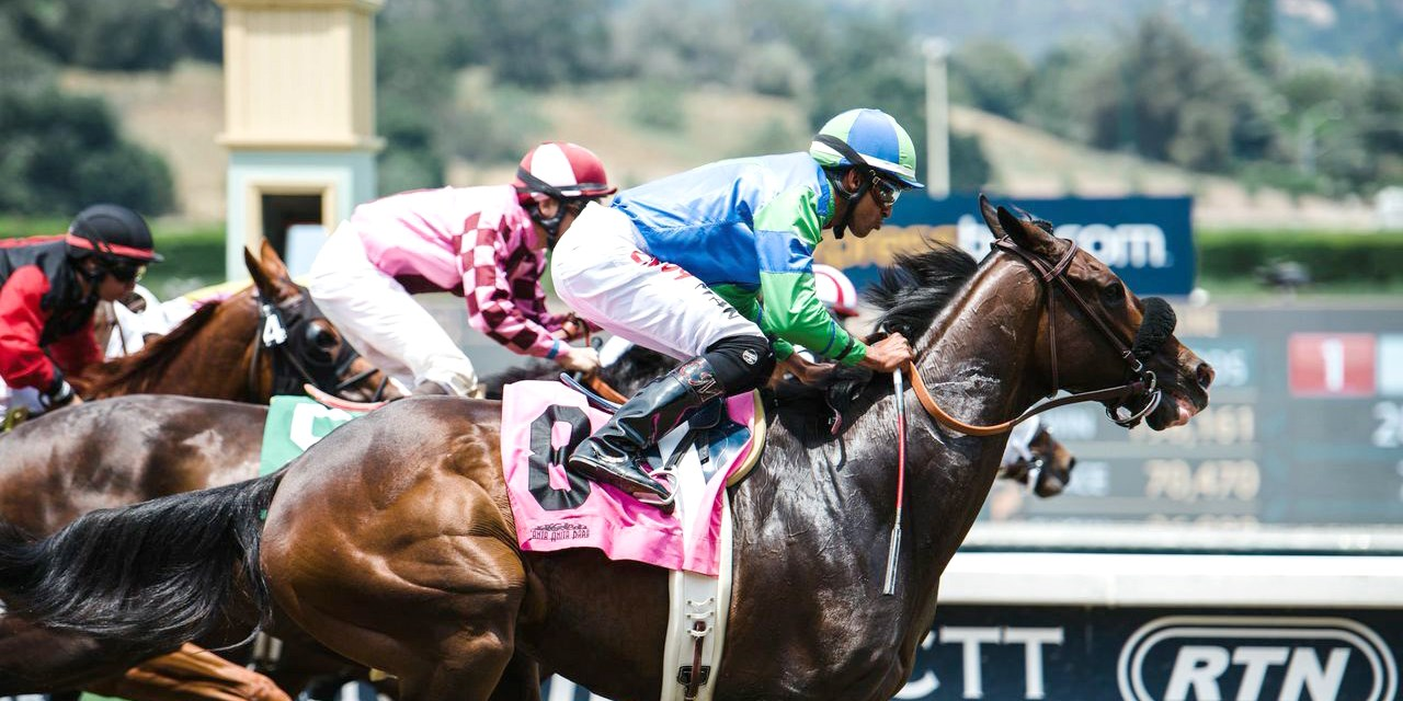 $35 -- Santa Anita Horse Races: VIP Box Seats for 4, 60% Off