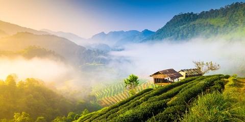 $1852 -- Half-Price: 9-Day Northern Thailand Adventure for 2