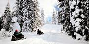 $99 -- Grey Bruce: Guided Snowmobile Ride for 2, Reg. $300