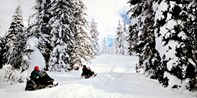 $99 -- Grey-Bruce: Guided Snowmobile Ride for 2, Reg. $270