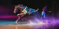 Cavalia: 25% Off Best Seats for Equestrian Spectacle