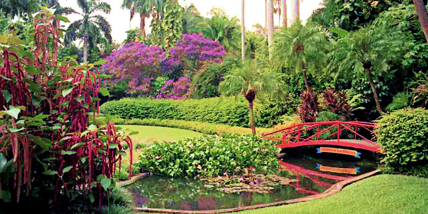 Sunken Gardens: Day for 2 at St. Pete 'Oasis,' 50% Off