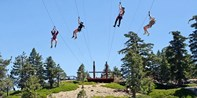 Mt. Baldy Zip Line w/Scenic Lift Ride
