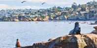 $20 & up -- La Jolla Sea Caves: Guided Snorkel or Kayak Tour