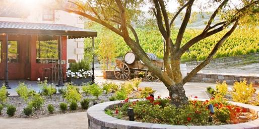 $25 -- VIP Tasting & Tour at Charming European Winery