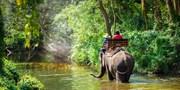 $3,299 起 -- 清邁 4 天套票 港龍早去晚返 送特色民族半天遊+騎大象