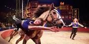 $10 & up -- Presale: Circus Flora's 30th Season in STL