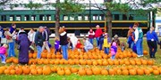 $17 -- Coopersville & Marne Railway: Famous Pumpkin Ride
