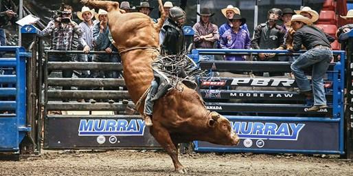 $15 -- Saturday: Pro Bull Riders in London, Reg. $25